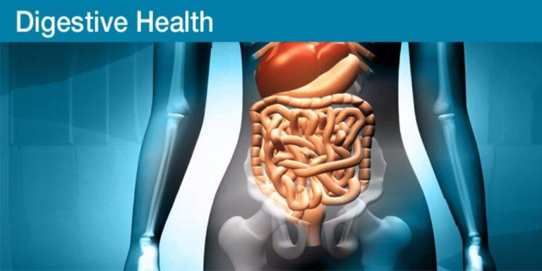 Digestive-Health-768x384